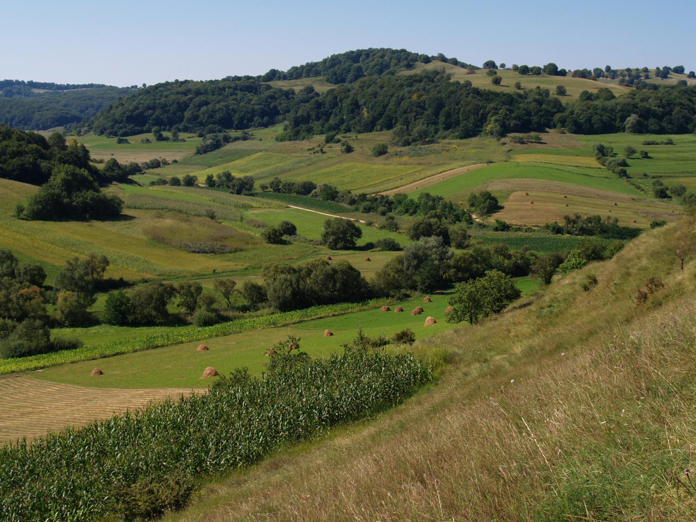 Eine strukturreiche Agrarlandschaft (Rumänien) kann die Artenvielfalt fördern.