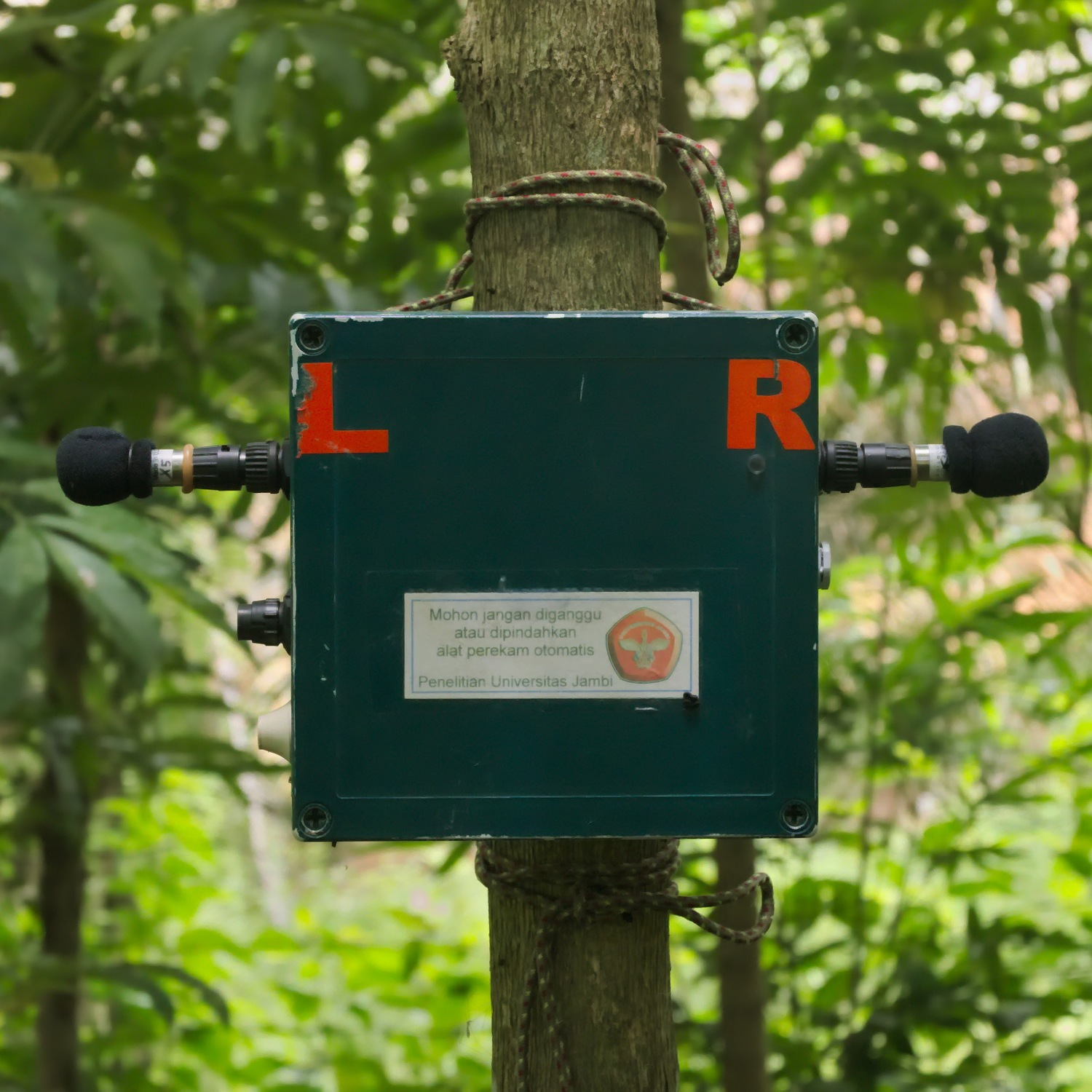 A programmable sound recorder is used in Jambi, Indonesia, to record biodiversity.