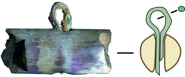 Fragment (around 1.5 cm long) of a balance beam of bone with a bronze suspension loop from Cliffs End Farm, Isle of Thanet, Kent, England, identified by Jörn Schuster