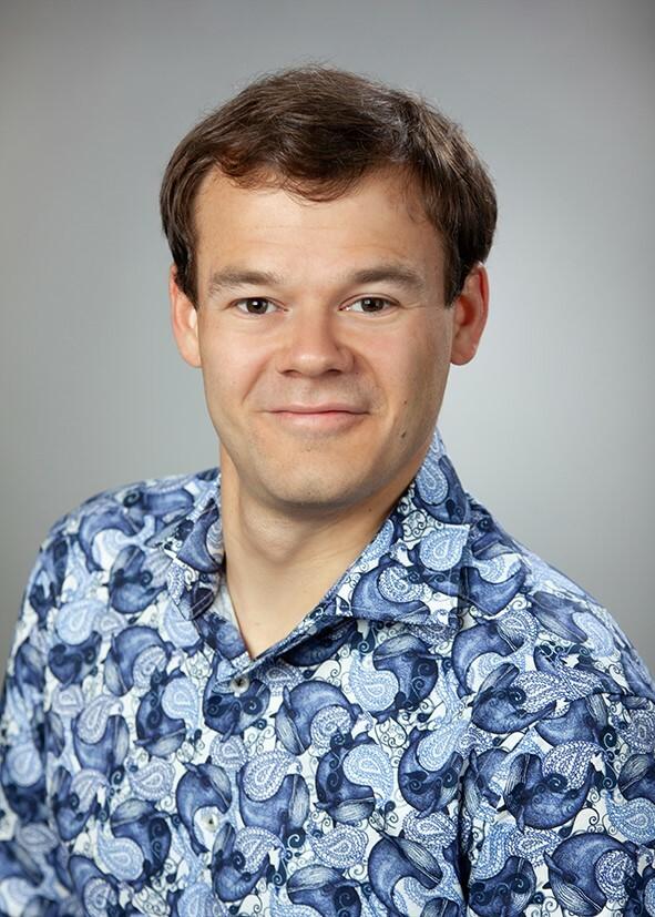 Professor Jan de Vries