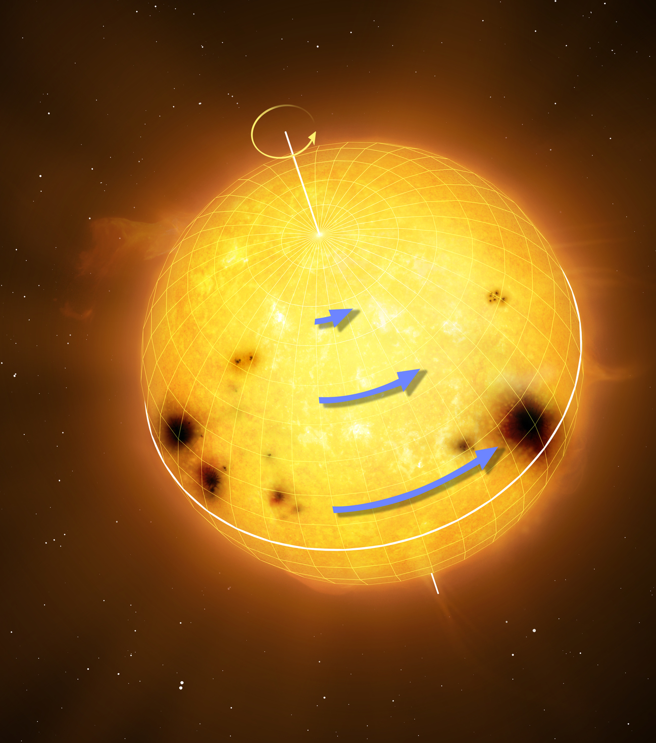Sun-like stars rotate differentially, with the equator rotating faster than the higher latitudes. The blue arrows in the figure represent the rotation speed. Differential rotation is thought to be an essential ingredient for generating magnetic activity and starspots.