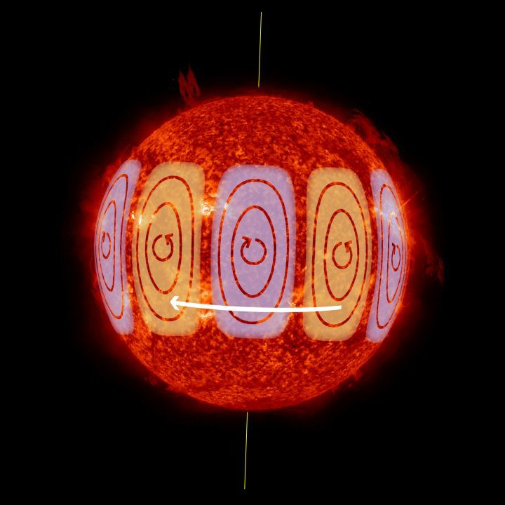 Solar Rossby waves are waves of vorticity that move in the direction opposite to rotation. They have maximum amplitudes in the Sun's equatorial regions.