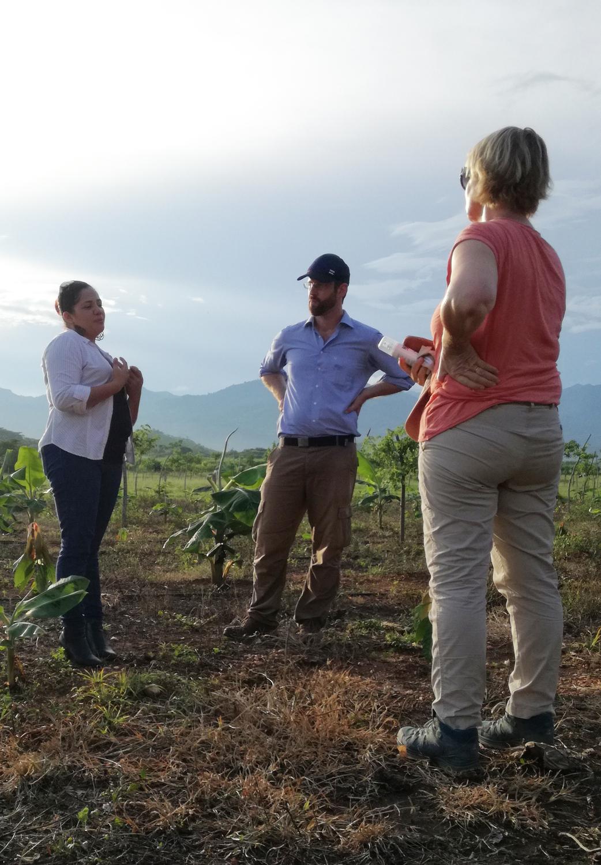 Issis MaradiagaI vom Verband der Kakao-Produzenten APROSACAO erklärt den deutschen Forschern und Co-Autoren der Studie Etti Winter (Leibnitz-Universität Hannover) und Yves Zinngrebe (Unviersität Göttingen) das Produktionssystem aus Schattenbäumen, Bananenpflanzen und Kakao.