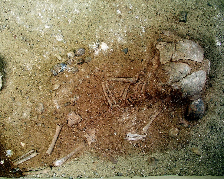 Erst im Labor der HTW Berlin wurde das Grab eines kleinen Kindes freigelegt, das mit rotem Ocker bestreut beigesetzt worden ist.