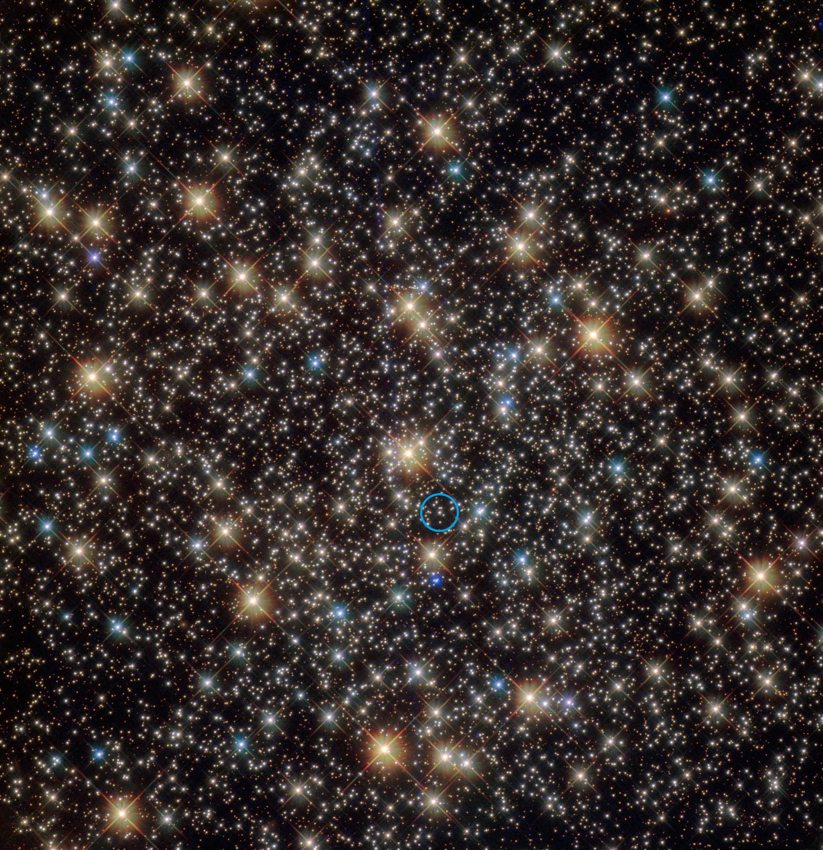 Hubble-Bild der zentralen Region des Kugelsternhaufens NGC 3201 im südlichen Sternbild Vela (das Segel des Schiffs Argo). Der Stern, der ein Schwarzes Loch mit der vierfachen Masse der Sonne umkreist, ist mit einem blauen Kreis gekennzeichnet.