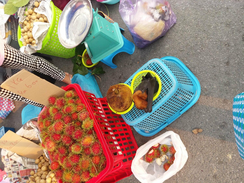 Wildtiermärkte wie dieser in Malaysia müssen besser reguliert werden, um vor den Risiken einer zukünftigen Pandemie zu schützen.
