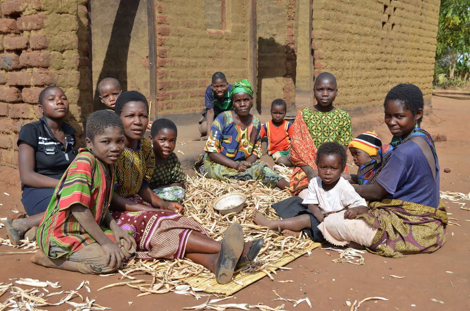 New breeding technologies can help make agriculture in developing countries more productive and protect against climate change. This photo shows smallholder farmers in Malawi peeling peas in front of their homestead.