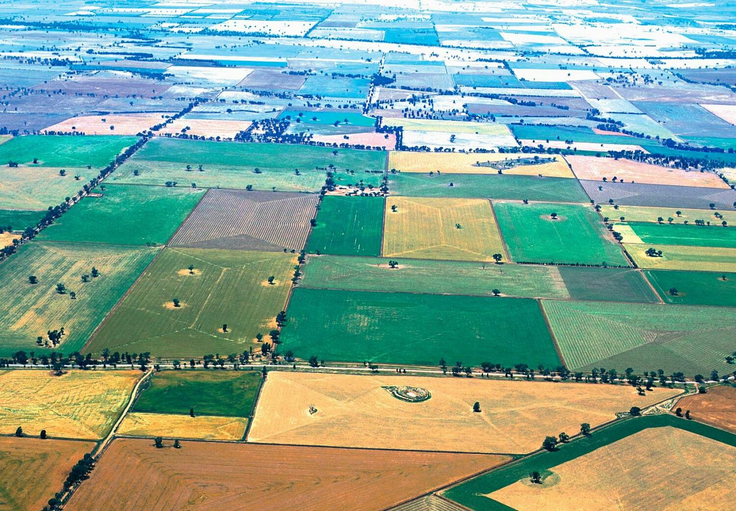A landscape in Australia shaped by many agricultural cultures.