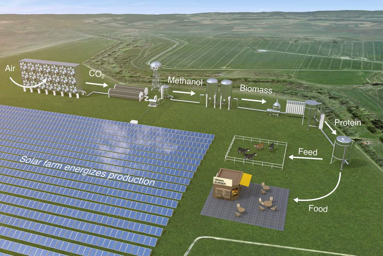 Derzeit nutzt die Landwirtschaft die Energie der Sonne, um Kohlendioxid, Wasser und Stickstoff über Pflanzen und Tiere in wertvolle Proteine umzuwandeln. Ein neues Lebensmittelsystem, das die durch Sonnenenergie angetriebene mikrobielle Produktion einbezieht, könnte die Proteinversorgung erheblich steigern und gleichzeitig weniger Land verbrauchen.