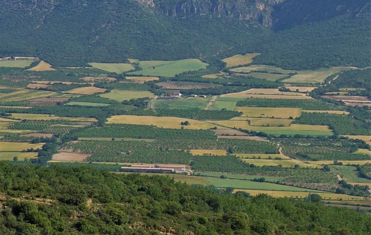 Eine heterogene und artenreiche Agrarlandschaft mit einem Mosaik unterschiedlicher und kleiner Ackerflächen (bei Lleida, Spanien)