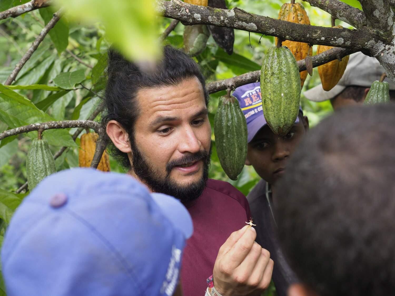 Erstautor Manuel Toledo zeigt Bauern, wie man die Kakaoblüten kontrolliert.