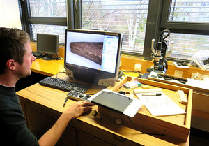 Tim Koddenberg from the Department of Wood Biology and Wood Products at the University of Göttingen examines the surface of a piece of wood with a high-resolution digital microscope. This makes it possible to analyse even the finest traces of processing.