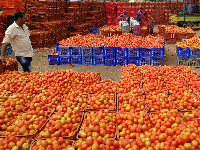 Arbeiter verpacken Tomaten auf dem Markt von Madanapalle, Indien, von wo diese in das gesamte Land geliefert werden.