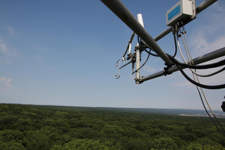 Am Messturm wird seit 20 Jahren kontinuierlich mit einer Auflösung von 30 Minuten der Kohlendioxid- und Wasserdampf-Austausch zwischen Wald und Atmosphäre gemessen.
