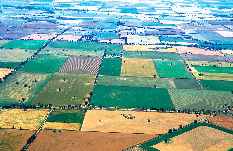 Eine von vielen landwirtschaftlichen Kulturen geprägte Landschaft in Australien.