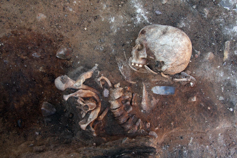 Im Jahre 2014 wurde in Groß Fredenwalde u.a. diese Bestattung freigelegt.  Der spektakuläre Grabbefund ist für die Deutsche Forschungsgemeinschaft der Anlass, ein Projekt zur weiteren Erforschung dieses bedeutenden Fundplatzes zu finanzieren.
